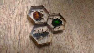 Hive game using real insects